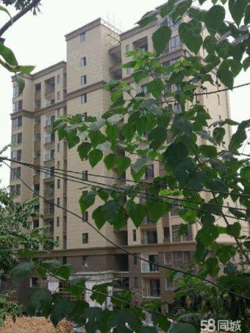 【6图】万州滨江路金悦湾小三室便宜出售,-重轻钢一层别墅乡村图片