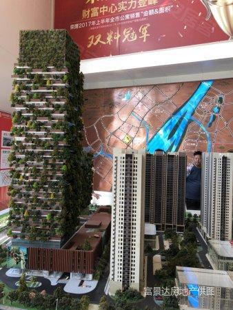河西旁 长江隧道口 双地铁口 垂直森林 民用水电明发财富中心