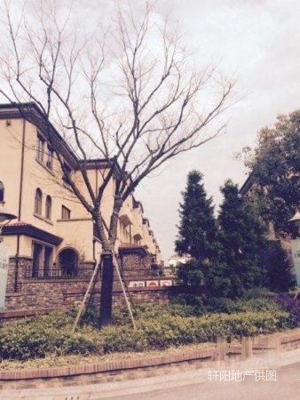 平房湾联排别墅送地下室40平实用价格173上海别墅面积涵溧阳田度假村图片