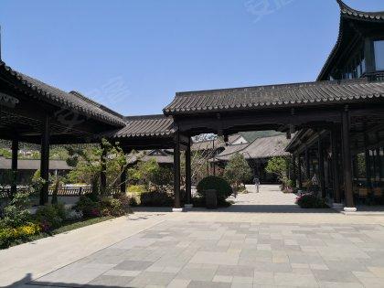 绿城桃李春风(别墅),桃李大道-杭州绿城科技春豪华别墅客厅图片大全的图片
