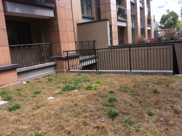 万元, 纯毛坯一楼带地下室花园洋房,总价低