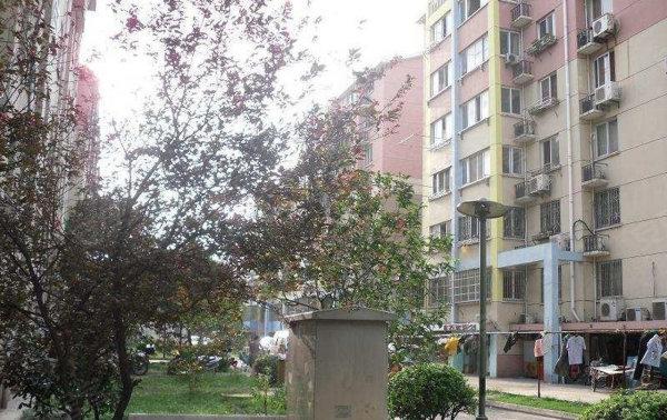 金都花園租房, 12平米, 250元, 金都花園單間出租250元 月,