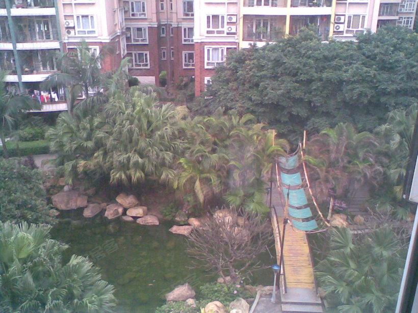 广州奥林匹克花园小区照片