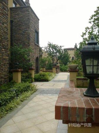 海口湾联排别墅送地下室40平实用面积173平别墅上海琼花图片