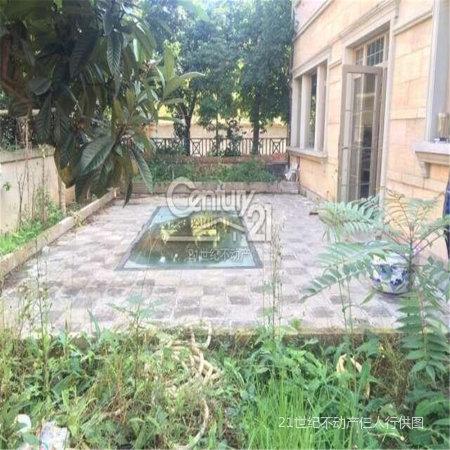 欧式独栋别墅带花园 泳池 独立车库 户型方正精装修!
