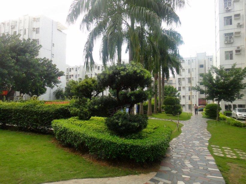 泰和花園小區照片