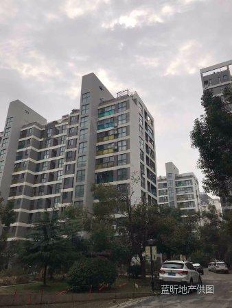 城市风景 精致三房 刚需必备 地铁口旁 梦园中学 性价比实惠