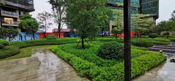 珠海市西区大楼盘 龙光玖龙湖 精装南北通单位 看河景