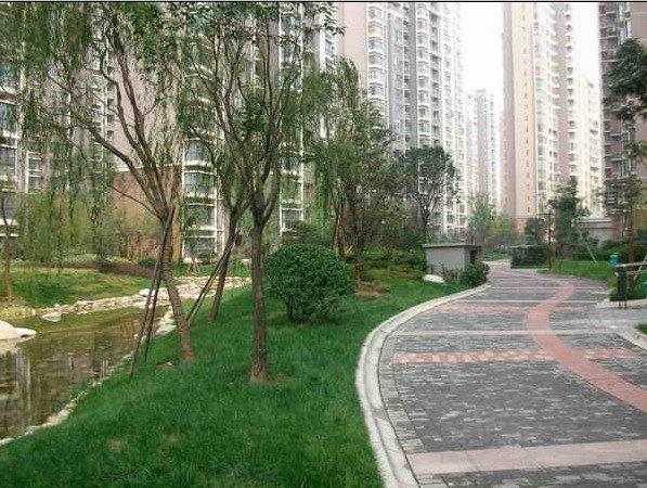 世家星城一楼带花园房子出租