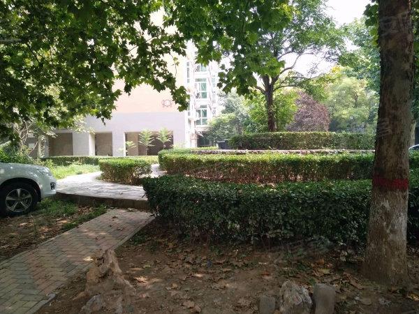 神州嘉园花香维也纳户型图实景图片