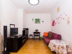 整租,金河小区,1室1厅1卫,45平米
