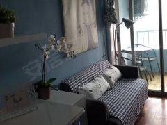 整租,精装修,新邱北西区,1室1厅1卫,47平米