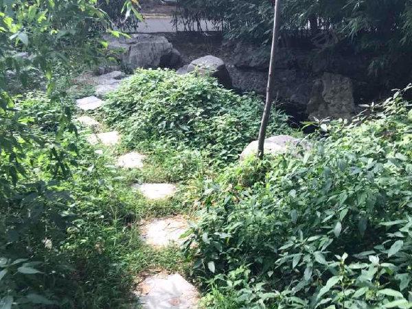 世纪花园(裕华)户型图实景图片