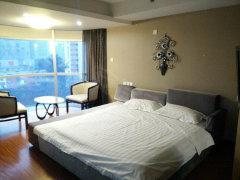整租,一流小区远洲国际,1室1厅1卫,48平米