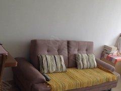 整租,金水名居,1室1厅1卫,55平米
