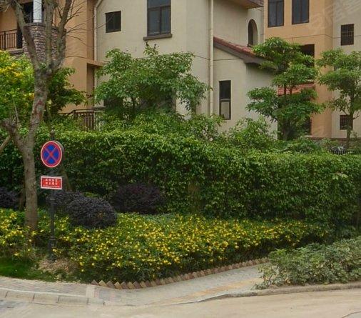 真 嘉和城聯排別墅 帶花園 帶閣樓 帶車庫 帶家庭影院