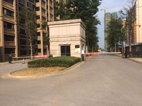 交通设计院精心打造 金湘苑板楼 豪华户型 南北通透 全新装修