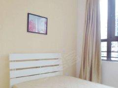 全新装修,一室一厅一卫,环境干净卫生,房间宽敞