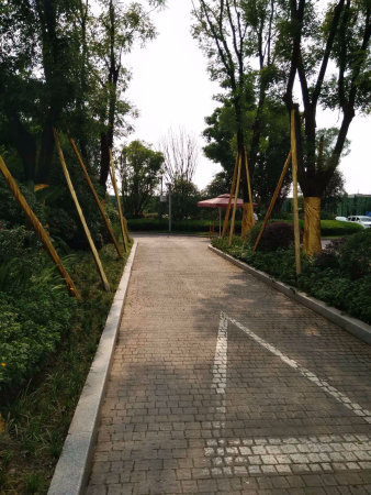 360万方中央轨道站小学商圈旁带巴蜀小学和八北岸亦庄公园图片