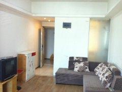 整租,观景南城,1室1厅1卫,55平米