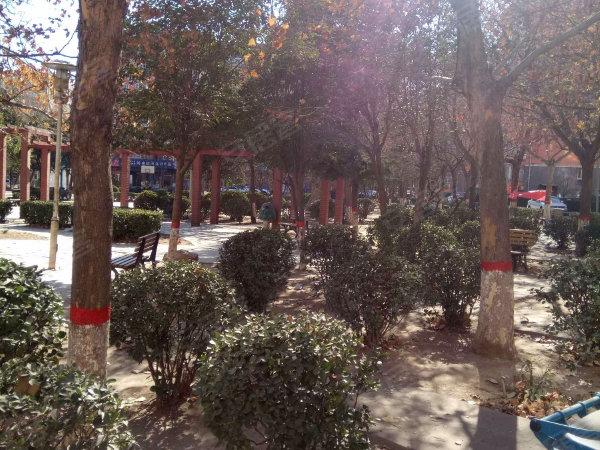 龙泉花园西区户型图实景图片