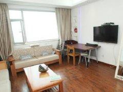 整租,金凯大厦,1室1厅1卫,48平米