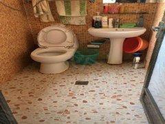 整租,欣苑小区,1室1厅1卫,55平米