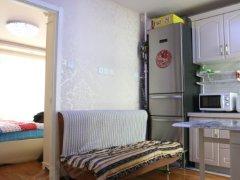 整租,精装修,汉津花园,1室1厅1卫,47平米