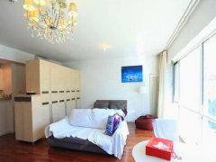 新城国际公寓租房10000元/月