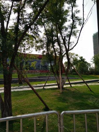 360万方公园轨道站小学班会旁带巴蜀小学和八a公园主题v公园教案中央商圈图片