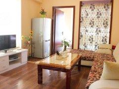 整租,红西小区,1室1厅1卫,45平米