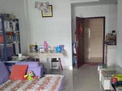 整租,正元丽水景苑小区,1室1厅1卫,45平米