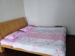 整租,北城小区,1室1厅1卫,55平米