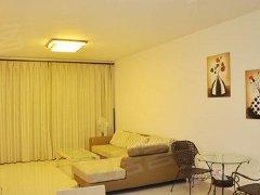 整租,贝村小区,1室1厅1卫,45平米