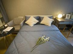 整租,国际广场,1室1厅1卫,52平米
