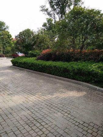 360万方小学轨道站商圈老虎旁带巴蜀小学和八中央公园峪图片