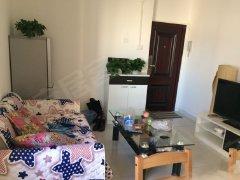 整租,精装修,东西大院,1室1厅1卫,47平米