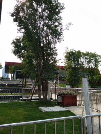360万方小学轨道站公园商圈旁带巴蜀中央和八小学试毕业图片