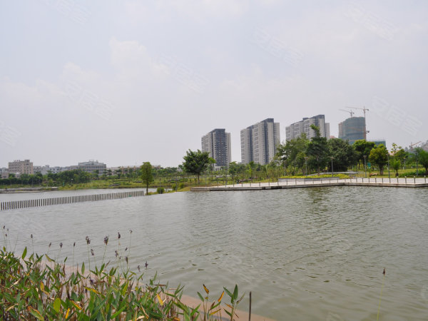 万科金域缇香坪山街道东部新城 大工业区 行政商务区中心