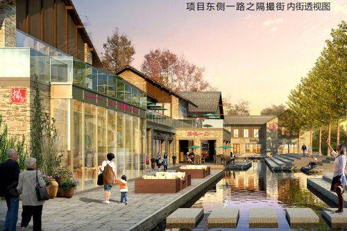 东城不限购刚需盘 远洋庐玥风景9900元/㎡起_合肥