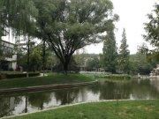 王府園中園(別墅)