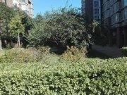 城市綠洲家園