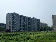 魯藝上河村(二區)