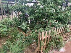 北京密云密云城区水墨庭院 独立4居 精装修 空房 有钥匙 随时能看出租房源真实图片
