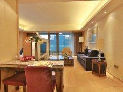 北京海淀中关村中关村新中关 远中悦莱 豪华一居出租房源真实图片