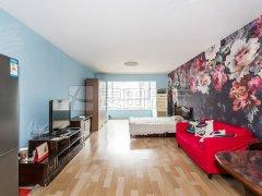 北京朝阳北沙滩正南 1室1厅  中天国际公寓出租房源真实图片