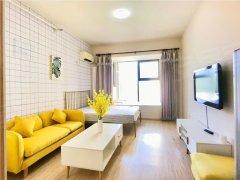 北京朝阳团结湖东三环 团结湖精装修一居室 只有一套 全新装修出租房源真实图片