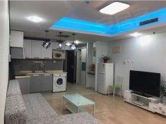 北京海淀苏州街人大 苏州街地铁口 艾瑟顿国际公寓豪华一居室 看房联系我出租房源真实图片