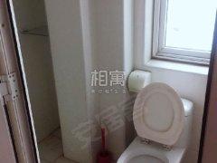 北京朝阳左家庄临近三元桥国展左家庄北里社区精装两居,随时看房出租房源真实图片