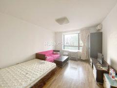 北京朝阳太阳宫半岛国际公寓 1室0厅1卫 7300元月 精装修 电梯房出租房源真实图片